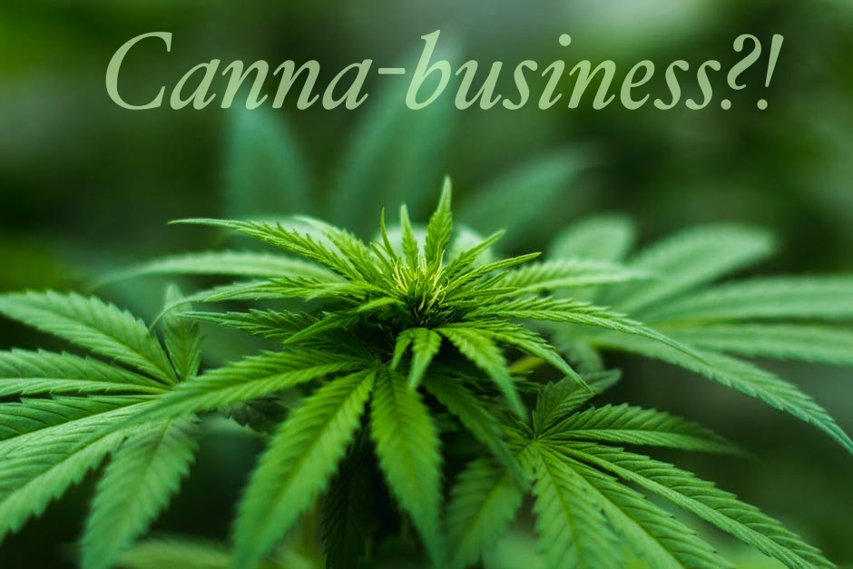 Cannabis Medical Business
