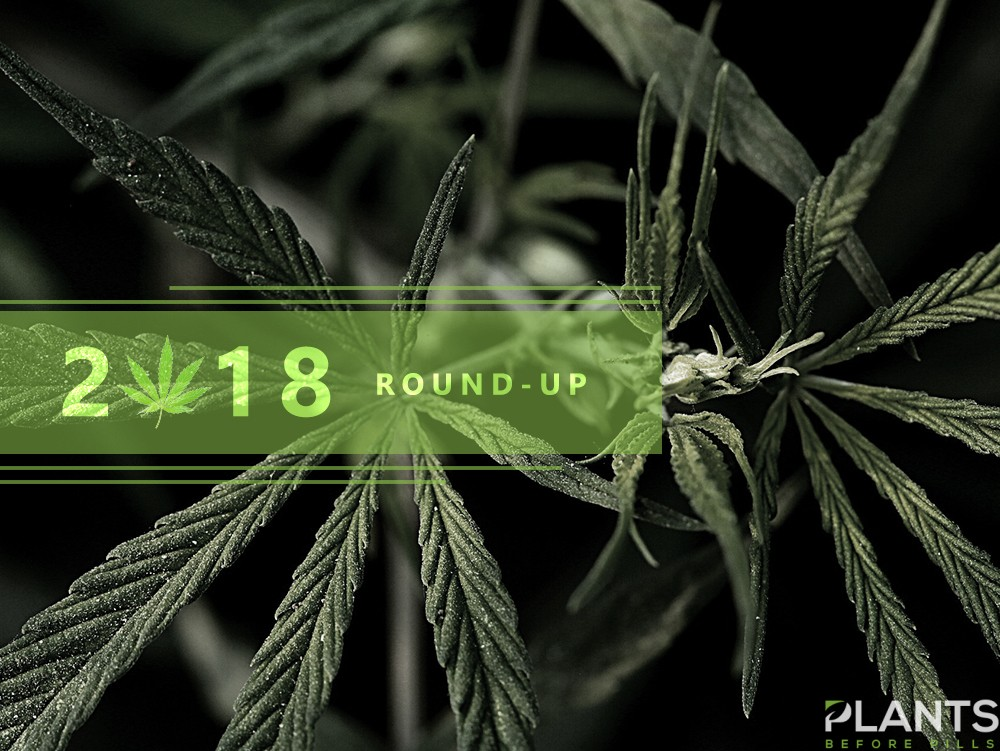 Cannabis 2018