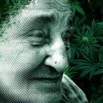 Alzheimer's Disease and CBD