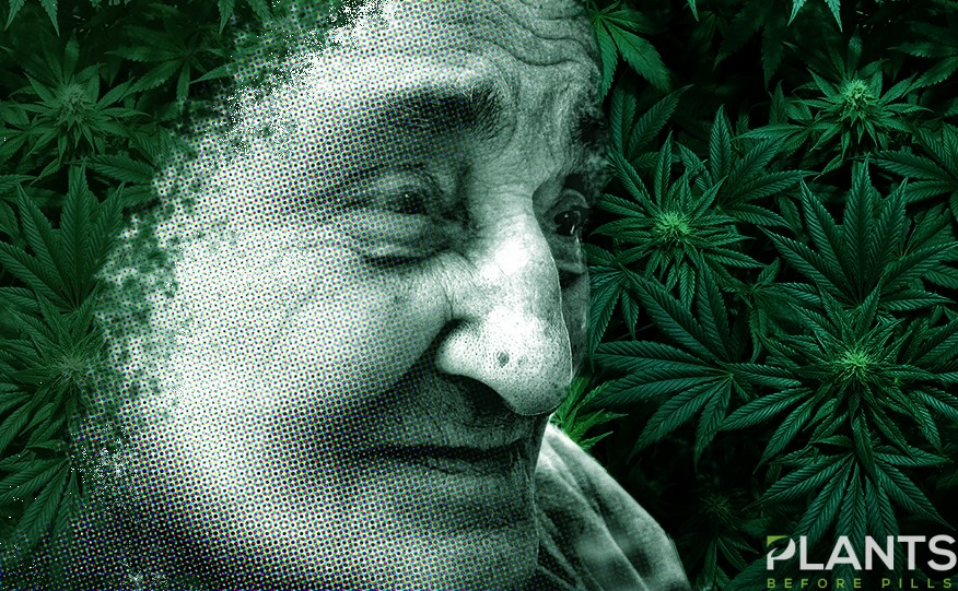 Alzheimer's Disease and CBD