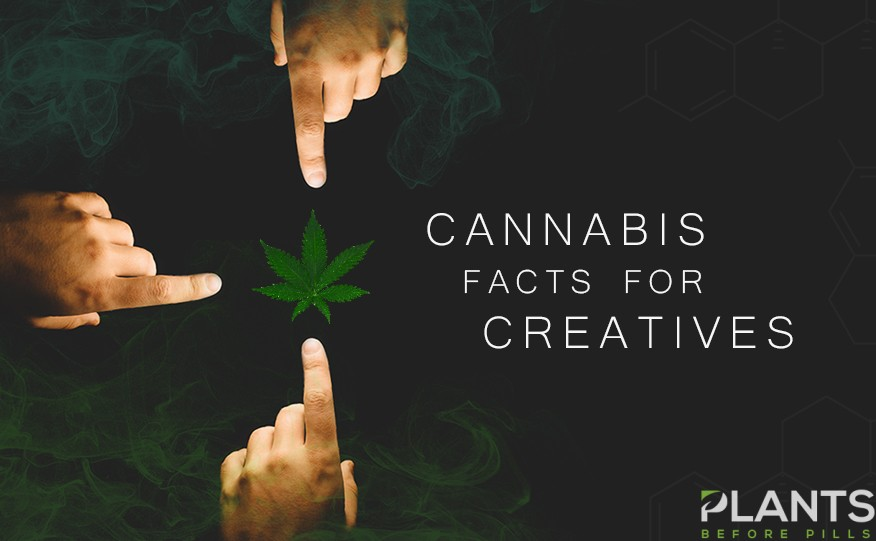 Cannabis Facts for Creatives