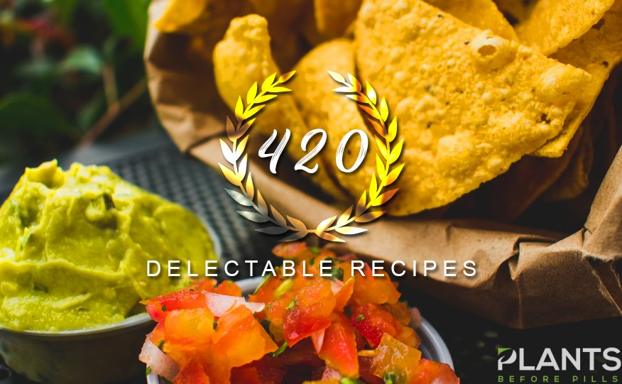 CBD Recipes