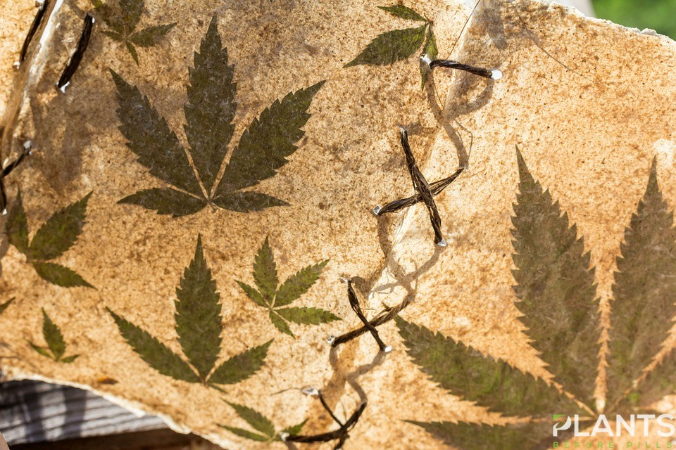 Historical Icons Weed Users