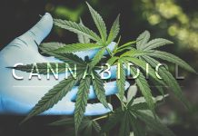 CBD Effects and Benefits
