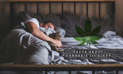 Medical Marijuana and Sleep