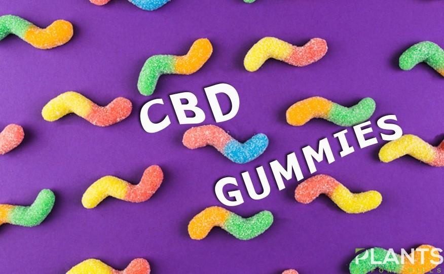 CBD Gummies