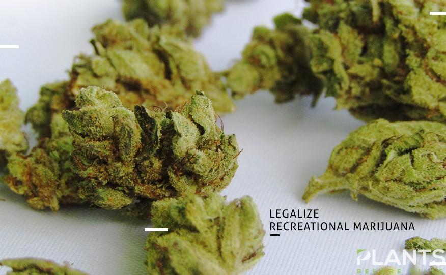 Illinois Marijuana Update