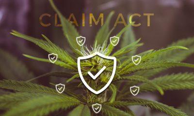 CLAIM Act - Cannabis Insurance