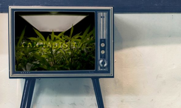 Cannabis TV Shows