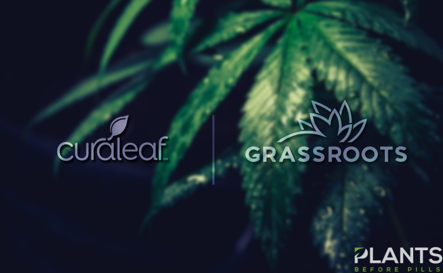 Curaleaf to Acquire Grassroots
