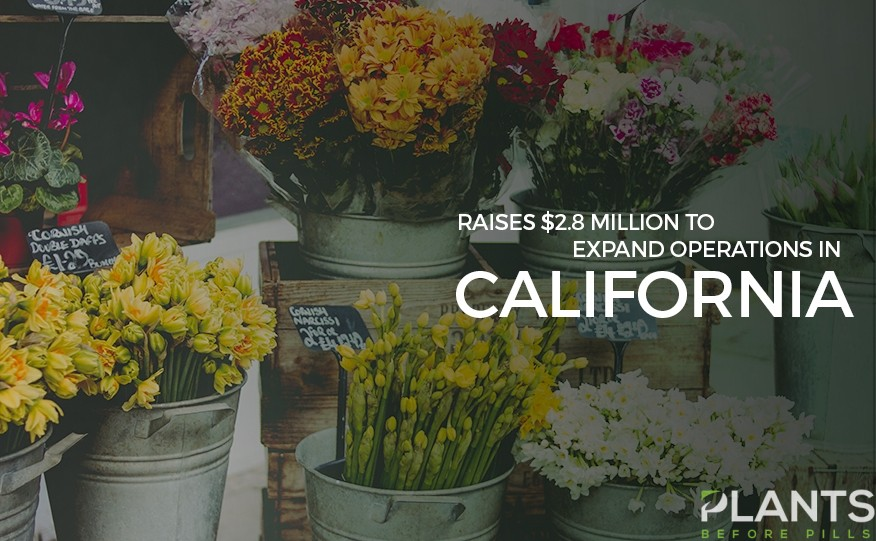 Flower Co Raises Fund for Expansion