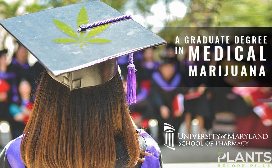 Graduate Degree in Medical Cannabis