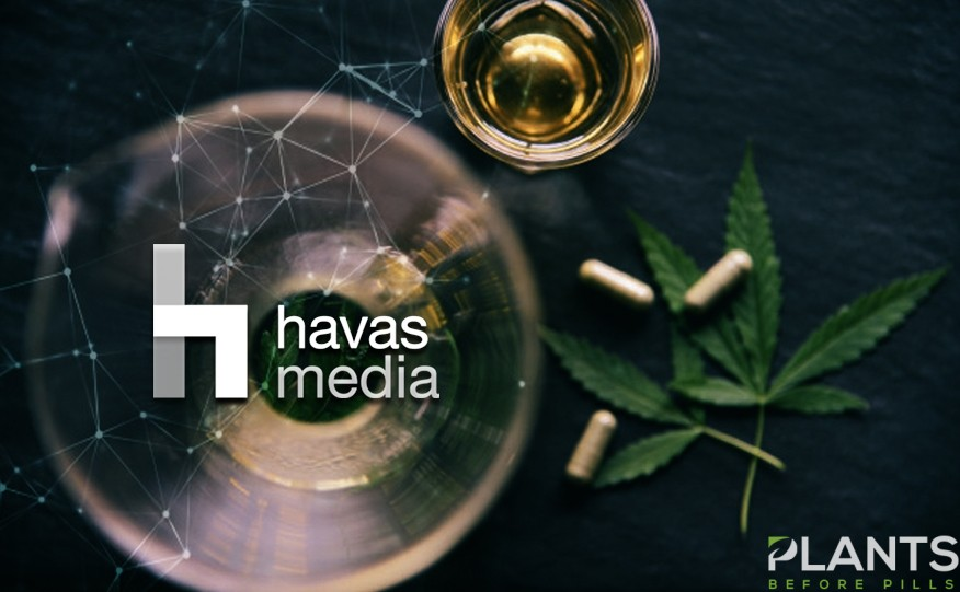 Havas Media Cannabis Consultancy Firm
