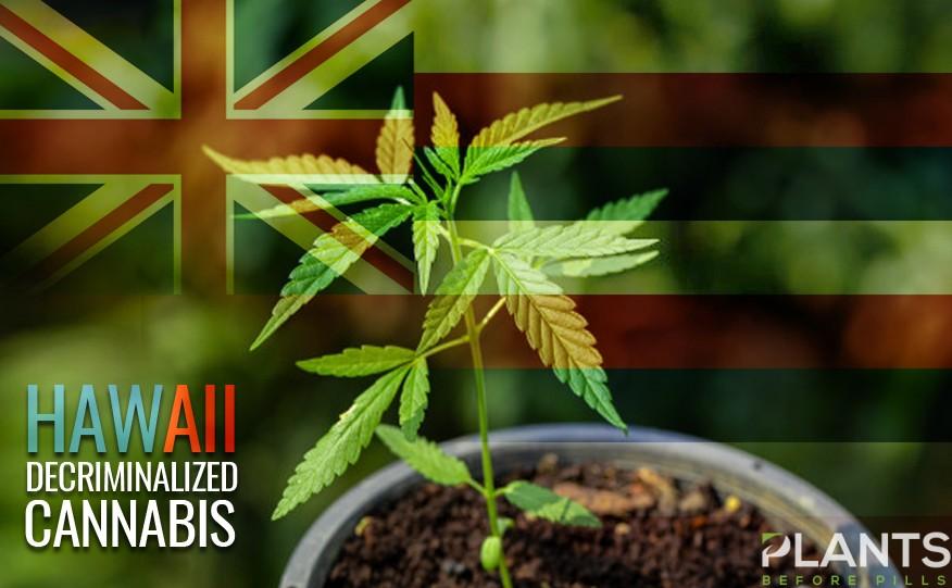 Hawaii Decriminalize Cannabis