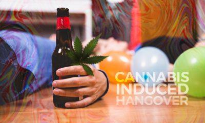 Marijuana Hangover