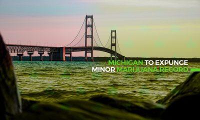 Michigan To Expunge Minor Marijuana Record