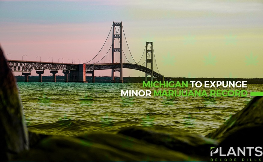 Michigan To Expunge Minor Marijuana Record