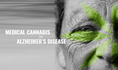 Minnesotta OK'd Medical Cannabis for Alzheimers