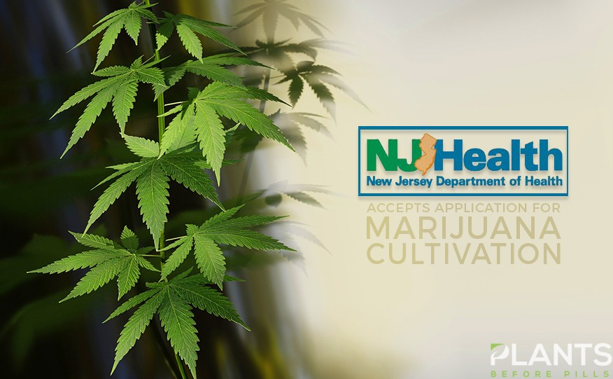 NJ Now Medical Marijuana Program