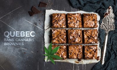 Quebec Bans Cannabis Brownies