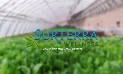Surterra Wellness New CFO