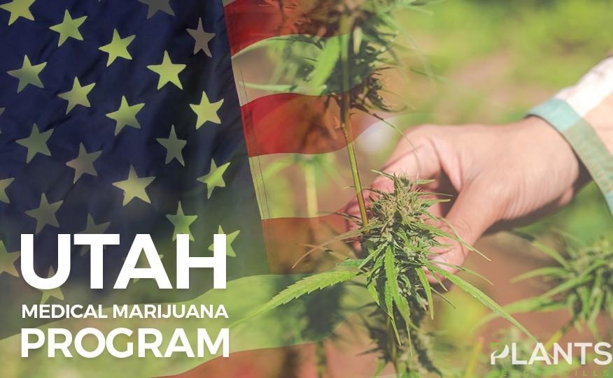 Utah Selects Marijuana Growers