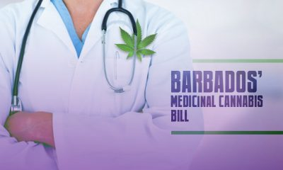 Barbados Medicinal Cannabis Bill