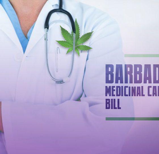 Barbados Medicinal Cannabis Bill