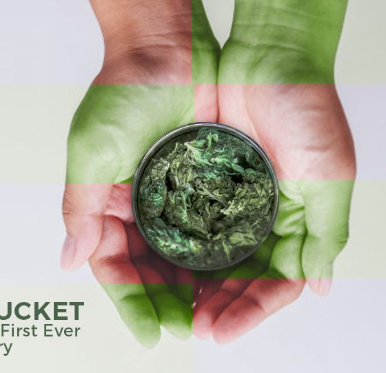 Nantucket Opens Its First Ever Dispensary