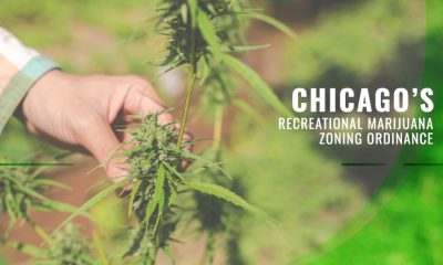 Chicago's Recreational Marijuana Zoning Ordinance
