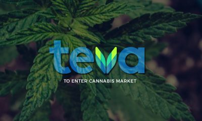 Teva Pharmaceuticals and Cannabis Market