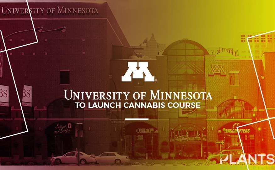 Cannabis Course