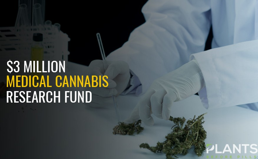 AU $3m Fund for Medical Cannabis Research