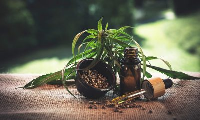 How You Can Enjoy CBD Oil