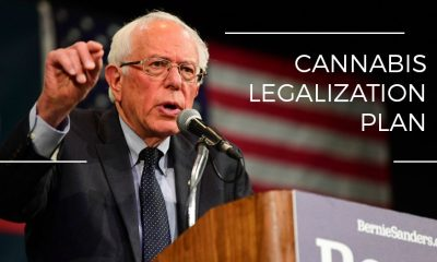 Bernie Sanders Unveils Comprehensive Cannabis Legalization Plan