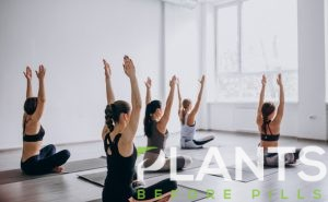Interested in CBD Yoga