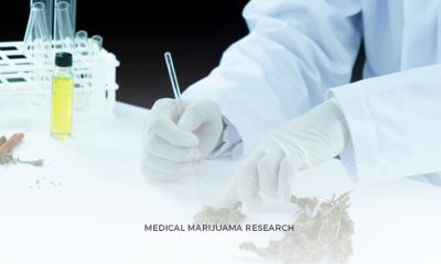 Medical Marijuana Research