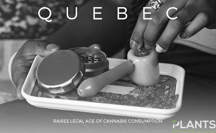 Quebec Raises Legal Age of Cannabis Consumption