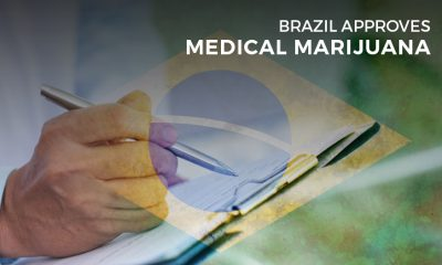Brazil Approves Medical Marijuana
