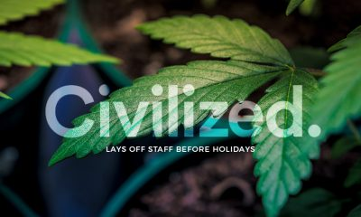 Civilized Life Mag - Laid Off Staff