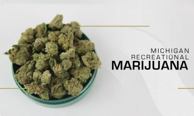 Recreational Marijuana Sales in Michigan