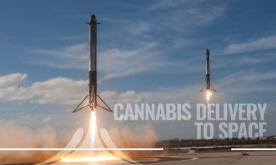 SpaceX to Bring Cannabis Delivery to Space