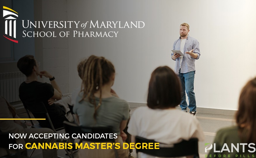 UMD Now Accepting Candidates for Cannabis Master's Degree