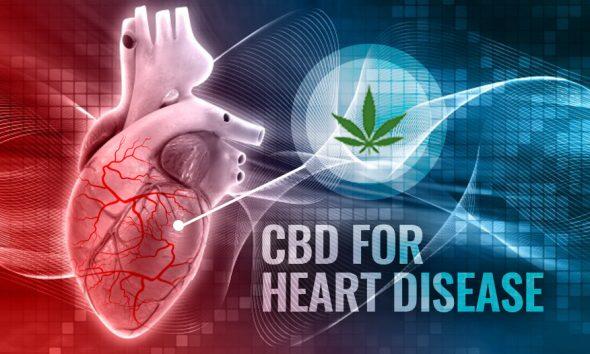 CBD for Heart Disease, Medical Marijuana