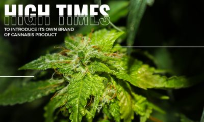 High Times Retail Stores