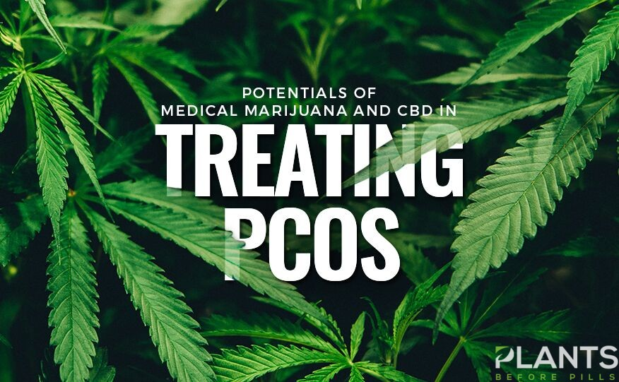 Medical Marijuana, CBD, and PCOS