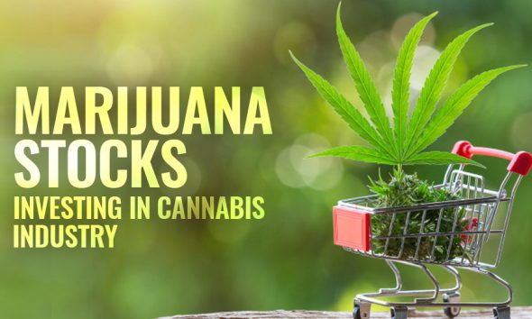 Marijuana Stocks, Cannabis Industry