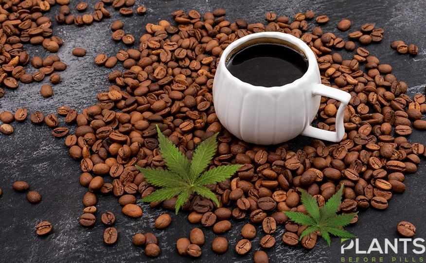 Cannabis Coffee in Indonesia