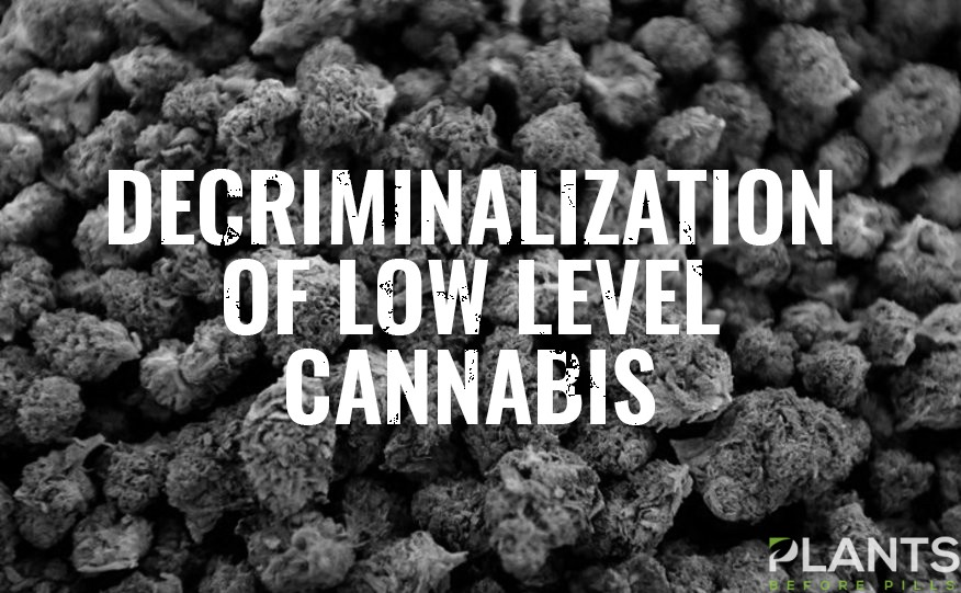 Low-Level Cannabis Decriminalization