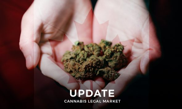 Cannabis Market in Canada - An Update